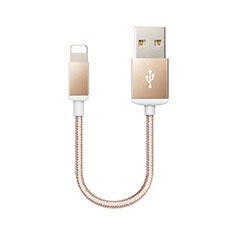 Cargador Cable USB Carga y Datos D18 para Apple iPad 10.2 (2020) Oro