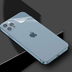 Protector de Pantalla Trasera para Apple iPhone 12 Pro Max Claro